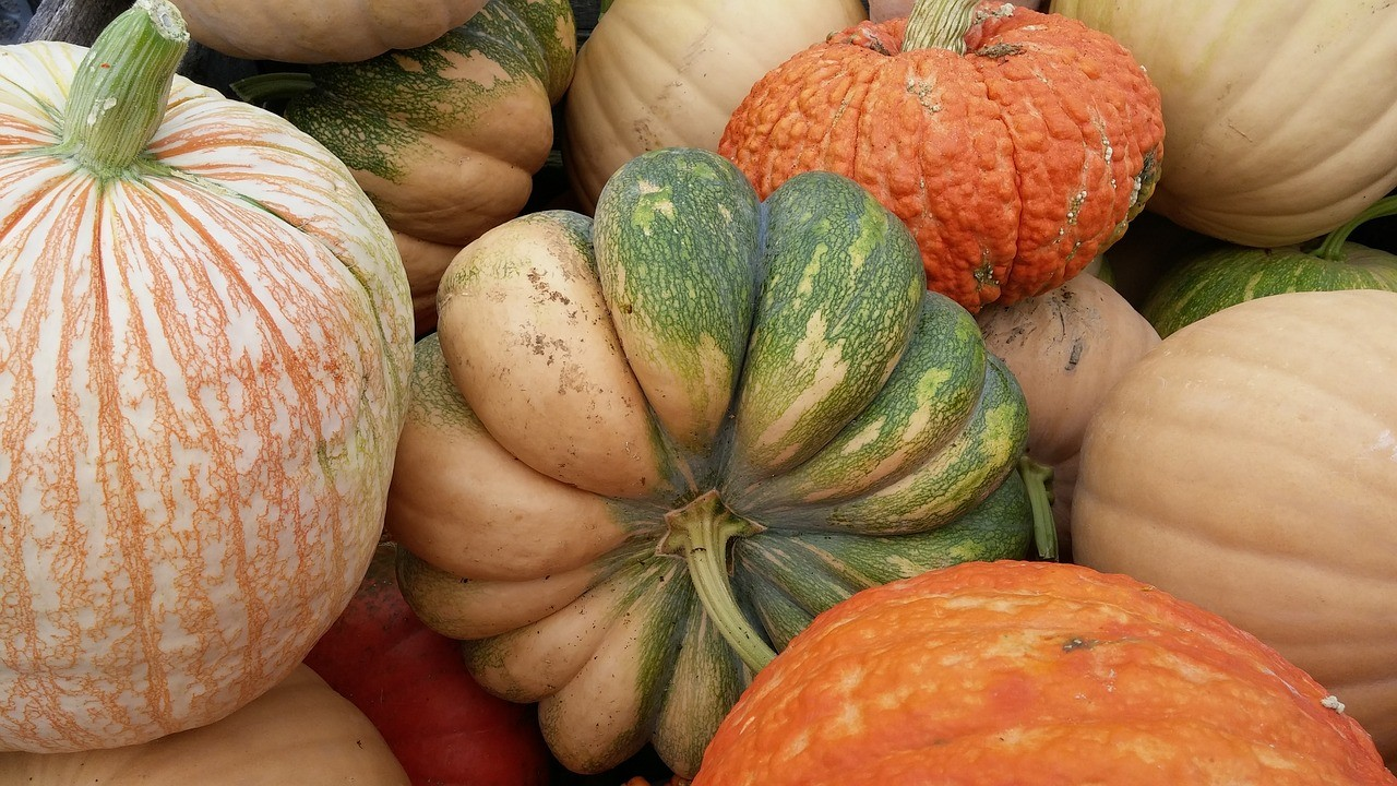 Combining different varieties of pumpkins make beautiful displays--On Board With the Gourd--How to Preserve And Decorate With Pumpkins