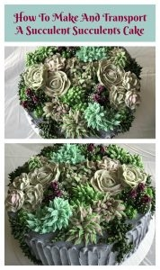 How to make and transport a succulent cake long distance by car for a birthday celebration--featheringmyemptynest.com