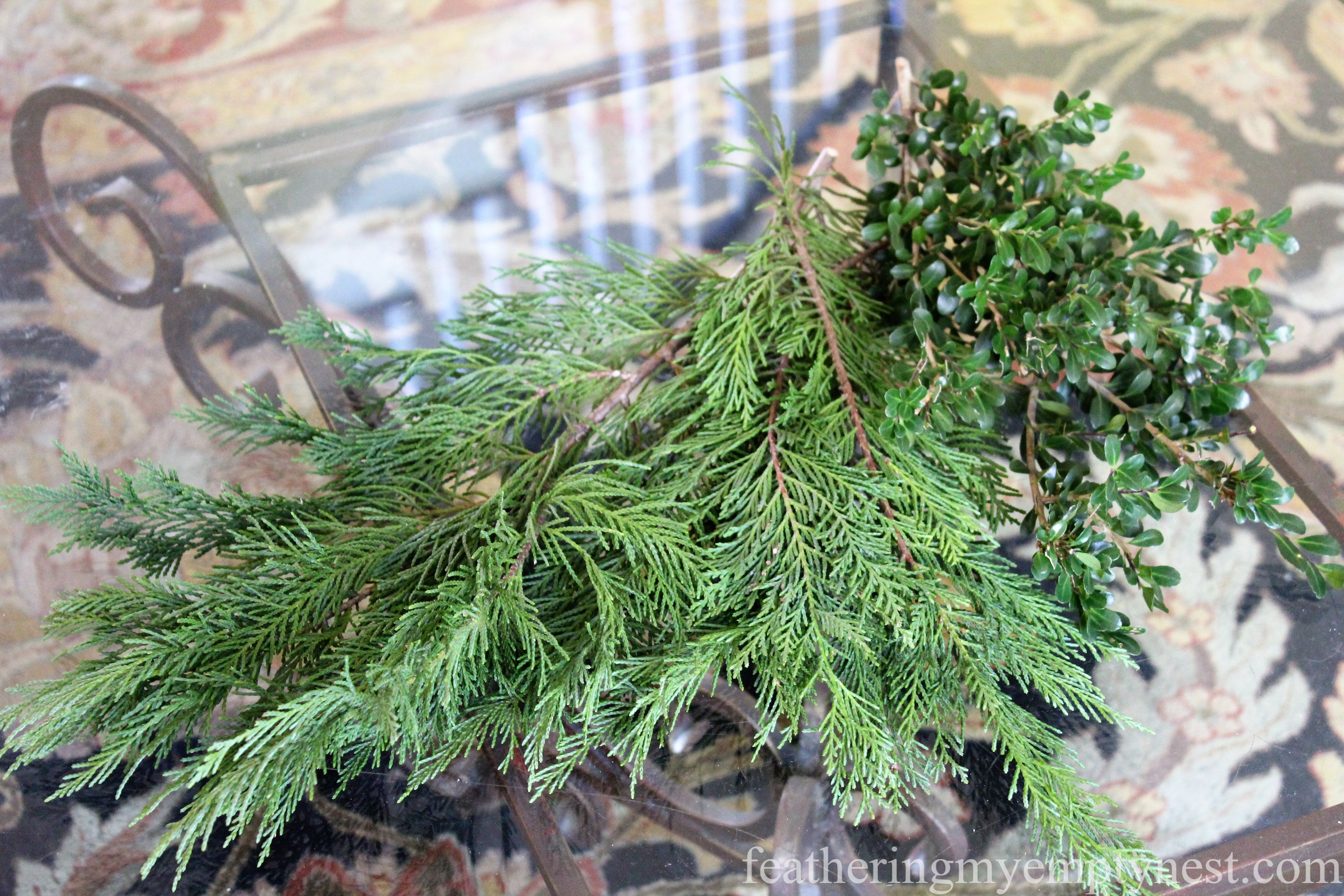 Cedar and boxwood --Easy Fall To Christmas Coffee Table Arrangements