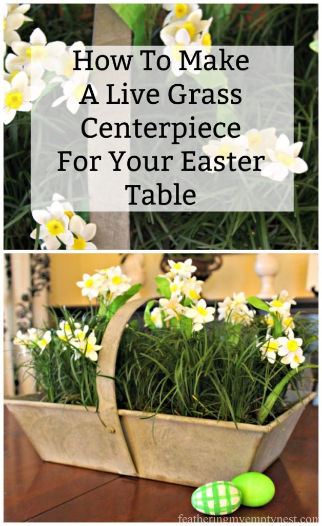How to make an affordable and easy live grass centerpiece for your Spring or Easter table using small pots of Mondo Grass.