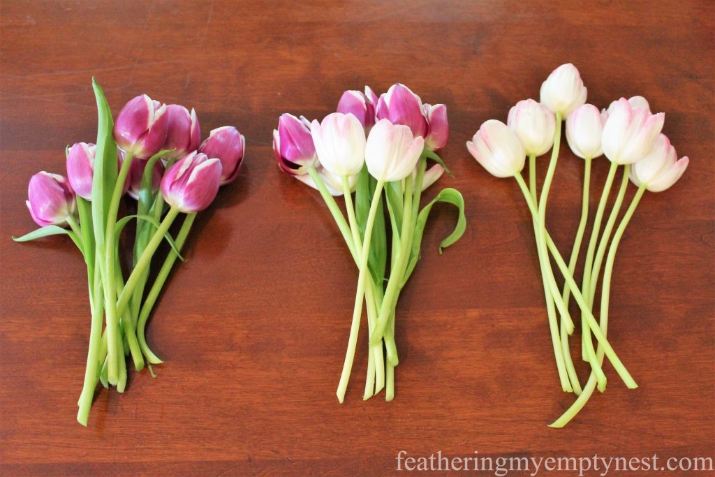 Bunches of tulips with leaves stripped and stems cut for arranging in a tulipiere --Arranging Tulips With Flower Arranging Tools & Tulipieres