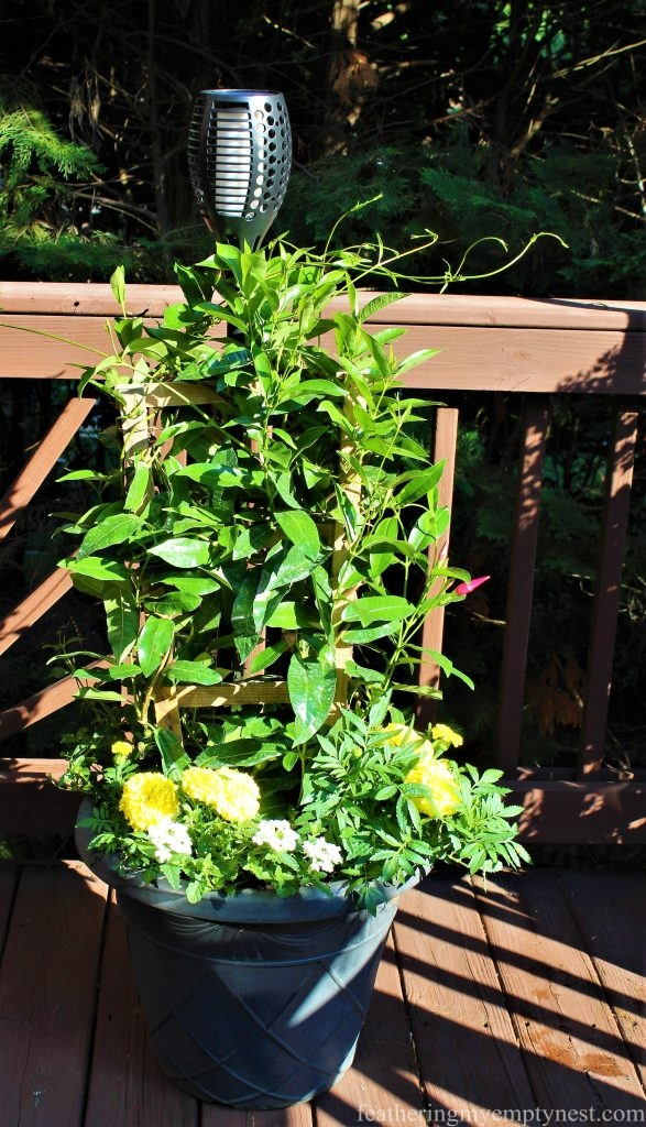 Pot filled with trellised Mandevilla, Marigolds, white Verbena, and Lantana are topped with a solar torch ---Summer Flower Planters On The Deck