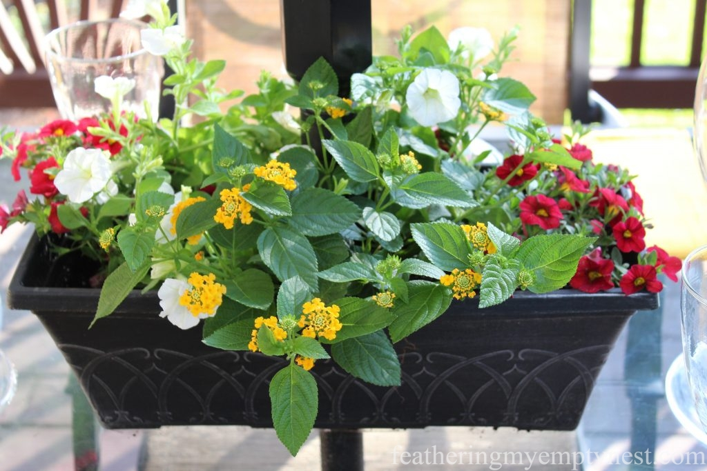 White Petunias, red Million Bells, and yellow verbena planted in a DIY umbrella planter --Yellow and red place setting coordinates with the summer flowers in the planters on the deck.