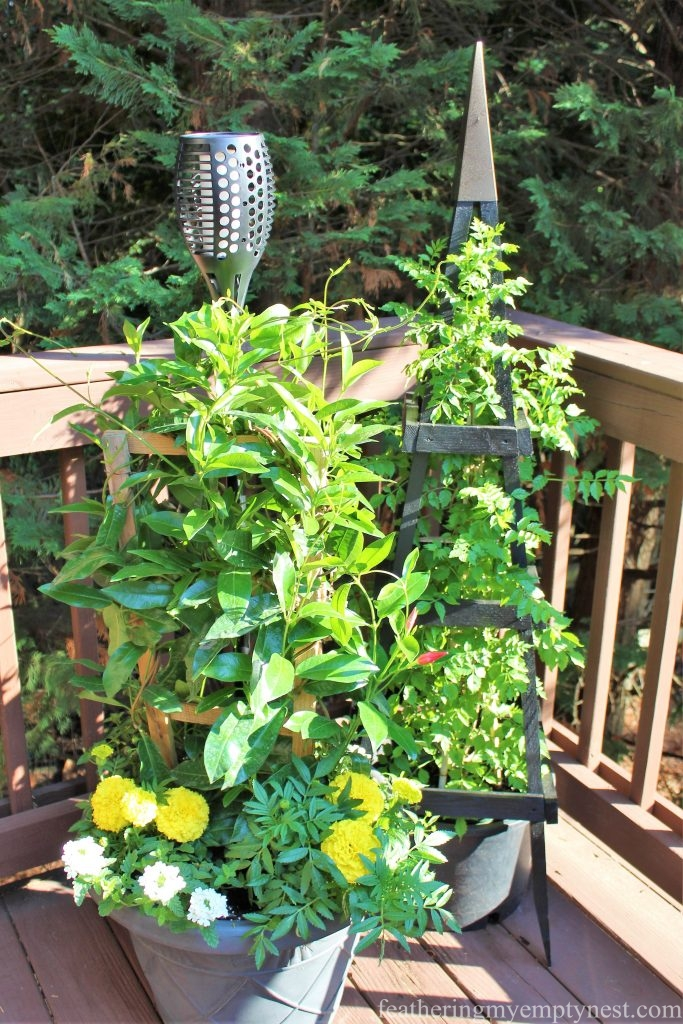 A pair of trellises add height and anchor the end of the summer deck ---Summer Flower Planters On The Deck