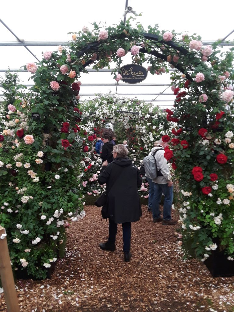 Rose Arbor, 2018 Chelsea Flower Show --Why The Chelsea Flower Show Should Be On Your Bucket List