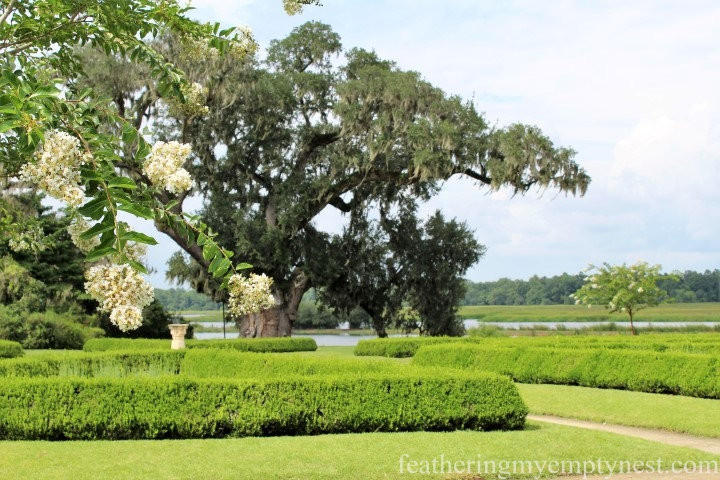 Sundial Garden and Middleton Oak --Exploring The Enchanting Gardens Of Middleton Place
