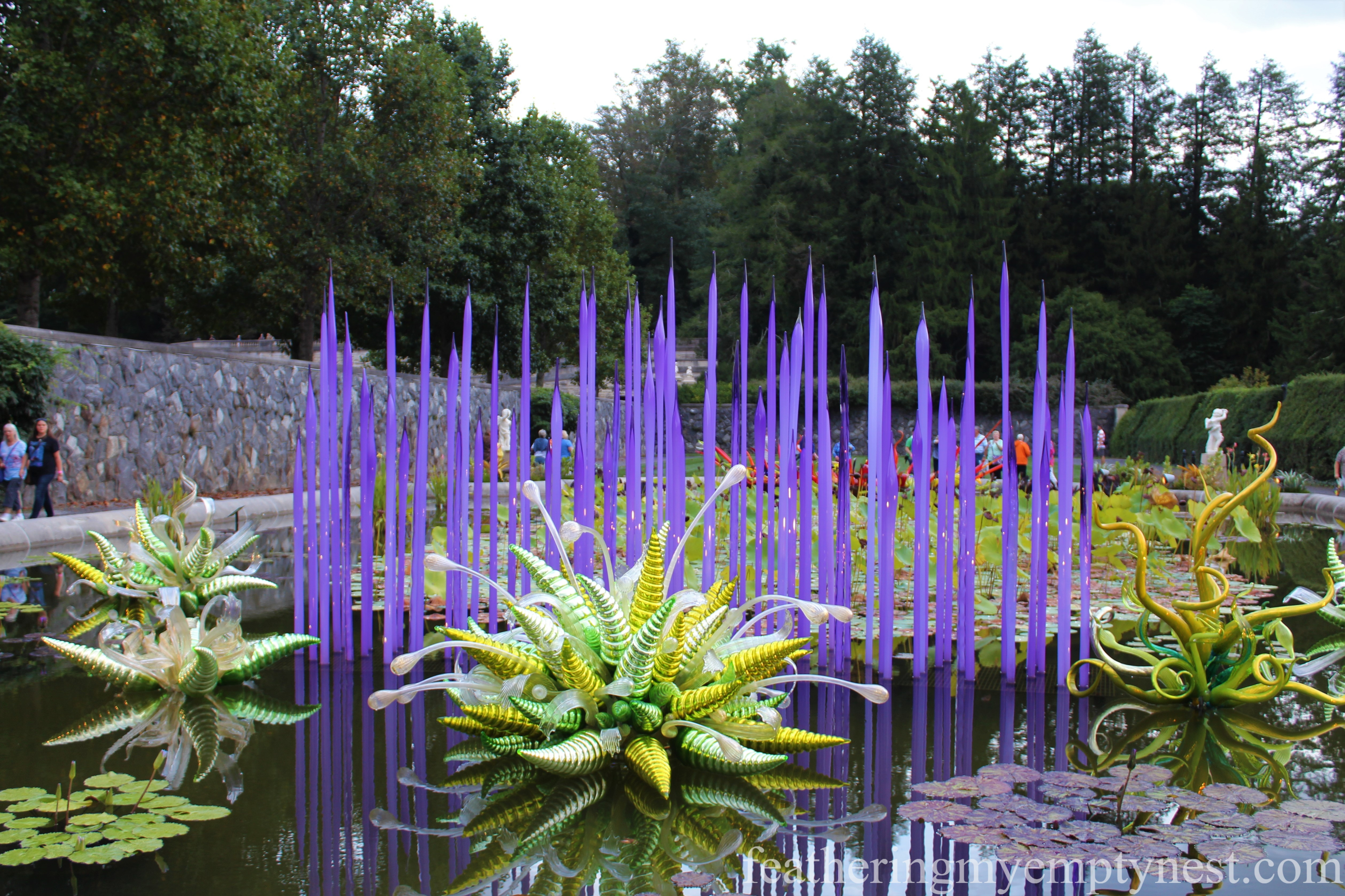 Chihuly glass sculpture Neodymium Reeds with Fiori Verdi in the Italian Garden Biltmore --Chihuly At Night At The Biltmore