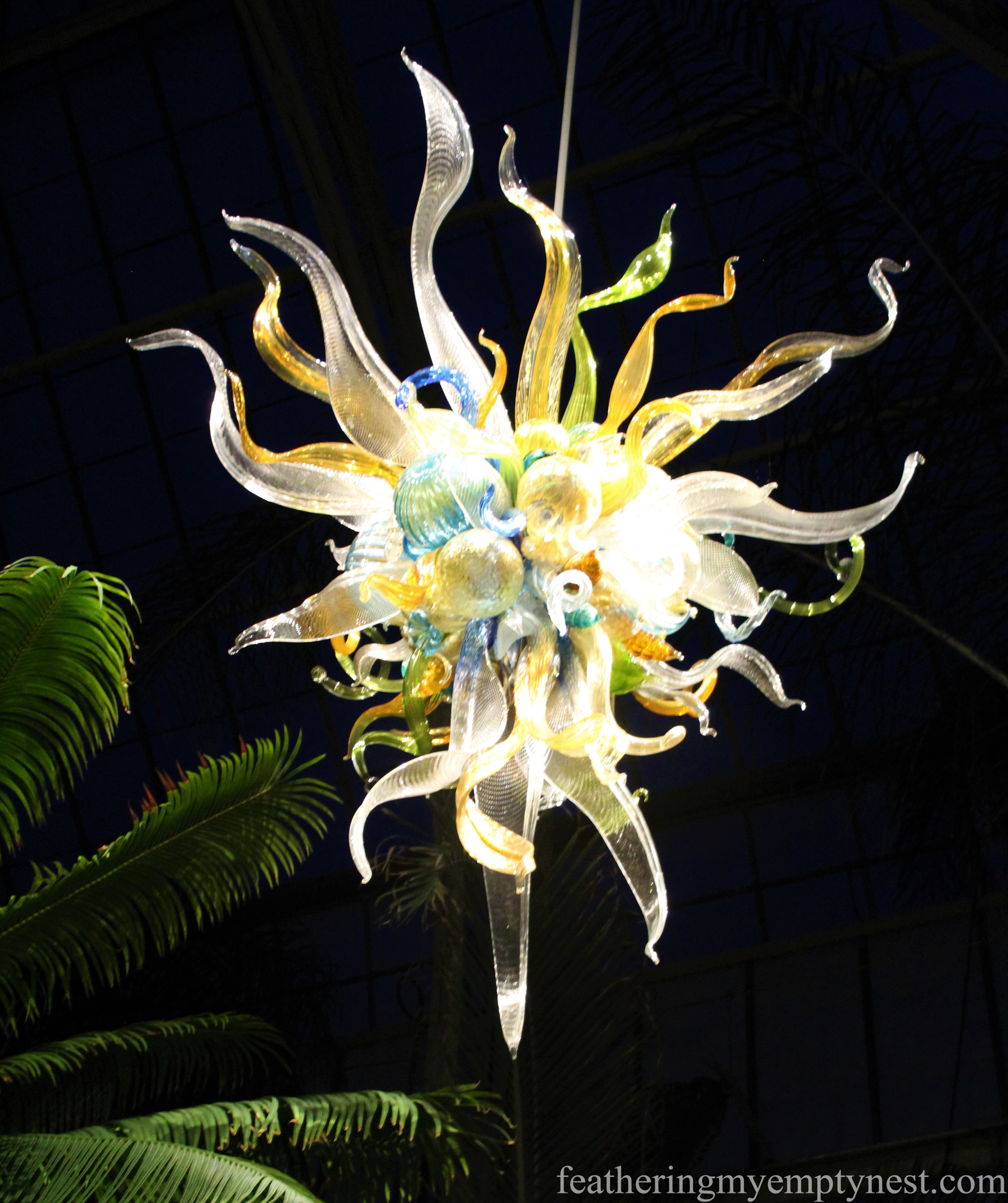 Chihuly chandelier in the Conservatory at Biltmore --Chihuly At Night At The Biltmore