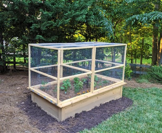 Lessons From A Novice Raised Bed Gardener-Raised bed garden with hinged cover for easy access.