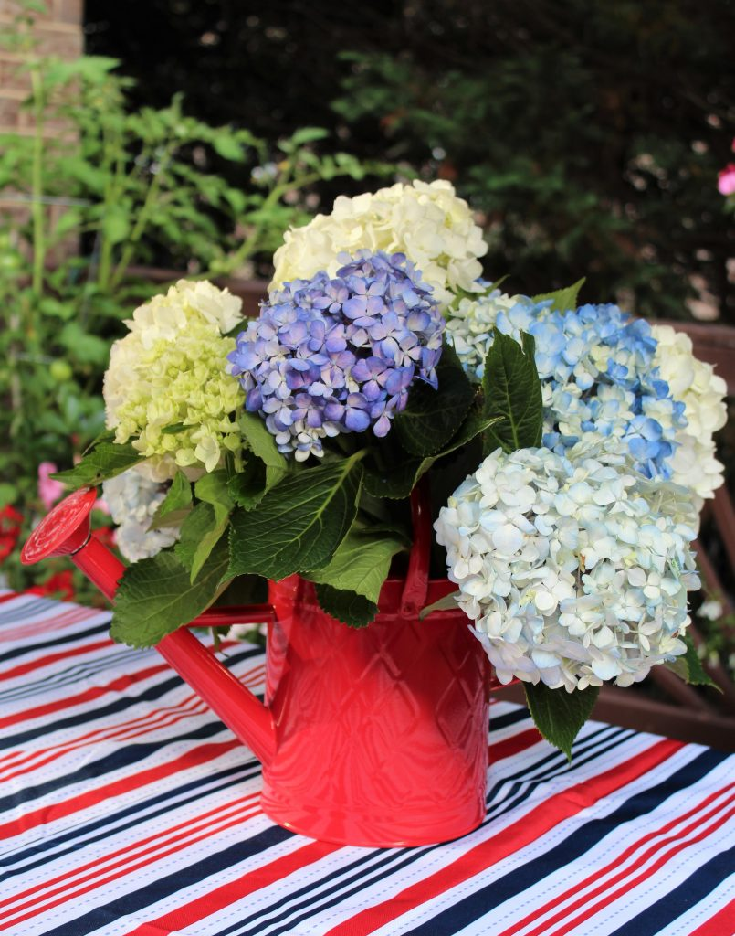 Bright red watering can serves as a vase for a bountiful bouquet of hydrangeas on this patriotic tablescape.