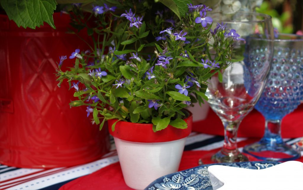 Mini red and white pots of Lobelia make lovely favors for guests at your 4th of July party.